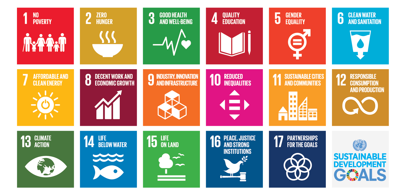 2019 Sustainable Development Goals